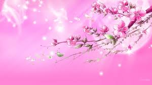 Image result for pink images