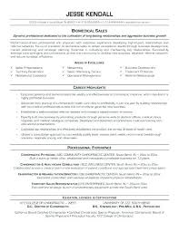 Career Change Resume Examples Combination Resumes Examples