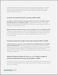 Project Manager Resume Sample Doc Classy Junior Project Manager Resume Stunning Junior Project Manager Resume
