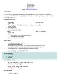 Successful Cv Layout Cv Template Free Professional Resume Templates Word Open