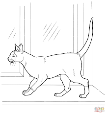 Small Picture Coloring Pages Animals Siam Cat Coloring Page Cat Coloring