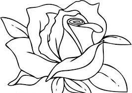 best free rose flower coloring page picture free 2941 printable