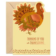 thanksgiving photo cards shiny turkey thanksgiving cards pack of 10 cardsforoccasion com