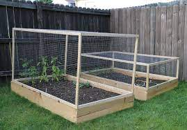 vegetable garden raised beds