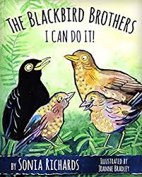 The Blackbird Brothers - I Can Do It! eBook: Richards, Sonia, Bradley,  Joanne: Amazon.co.uk: Kindle Store