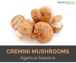 cremini mushrooms quick facts