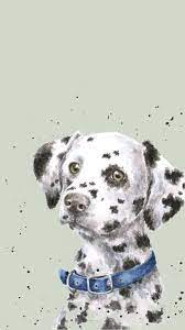 Dog wallpaper, Dalmatian dogs