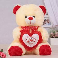 adorable cream teddy bear gift send
