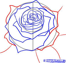 Small Picture 99 best How to draw tutorials Flowers images on Pinterest