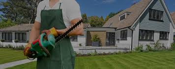 Diy Sod Lawn Care Maintenance Services Sodding Sod Grass And Turf