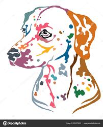 Barevné Dekorativní Portrét Profilu Dalmatin Pes Vektorové Ilustrace
