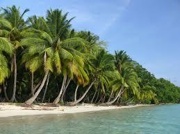 visit in andaman and nicobar islands