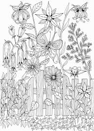 Secret Garden Coloring Pages New Garden Coloring Pages Awesome