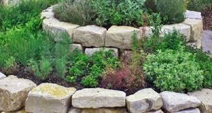 herb spirals the best way to grow