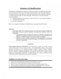 resume examples summary and resume summary of summary of qualifications examples for resume example of resume summary of qualifications sample entry level summary