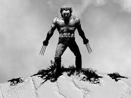 wolverine images wolverine wallpaper hd wallpaper and background photos