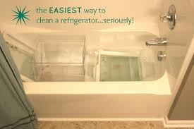 clean and organize the refrigerator spring cleaning 365 easiest way to clean bathtub