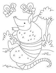 Small Picture Armadillo playing with flies coloring pages Download Free