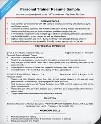 Cv Writing Examples Personal Profile How To Write A Summary Of Qualifications Resume Companion