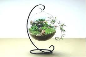 decorative hanging glass glass ball terrarium hanging glass globes home decorative hanging clear glass