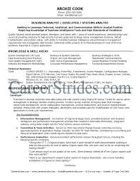 Business Analyst Resume Summary Examples System Analyst Resume Business Analyst Resume Summary Full Business 14