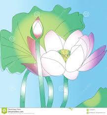 искусство эскиза цветка лотоса и нежность природы розовая