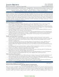 Business Development Executive Resume Top Senior Business Development Executive Resume Sample Resume For 4