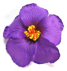 purple foam hibiscus flower hair clip bright purple foam hibiscus flower hair clip