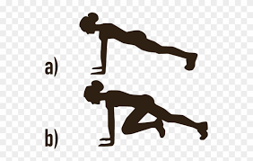 Image result for mountain climbers exercise