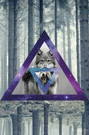 galaxy tumblr hipster wolf. Simple Wolf Hipster Wolves Pinterest Triangle And Galaxy 736x1104 For Tumblr Wolf P