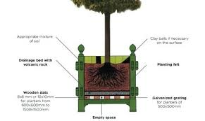 diagram demonstrating how to plant tree planter box large plans
