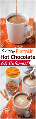 100 Pumpkin puree recipes on Pinterest Pumpkin spice Pumpkin.