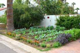 Small Picture diy garden design nz marvelous cheap garden ideas native garden
