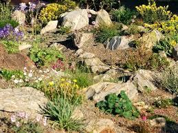 small river rock garden ideas garden idea desert rock garden ideas home plan flower stones landscaping small river rock garden