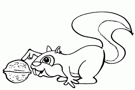 Small Picture Squirrel Coloring Pages Coloringpages Squirrel Coloring Page In
