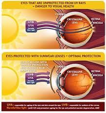 Uv Eye Protection Uv Protection Sunglasses Xperio Uv