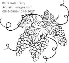 grapes clipart black and white. black and white clip art illustration of grapes with leaves clipart