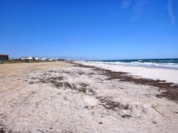 Oasiss Journey Fernandina Beach Fl Sm 717 To St Augustine
