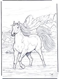 Small Picture Coloring Page Horse in the river coloring pages Pinterest