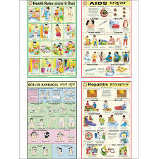 Educational Charts Manufacturers In India Health Educational Charts Health Educational Charts