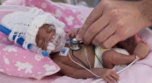 neonatal nurse pracioner college