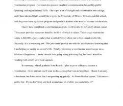 Example Essays Topics Autoethnography Example Ays Pdf Organisational Possibilities