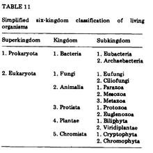 Five Kingdom Classification Chart Thomas Cavalier Smith Wikipedia