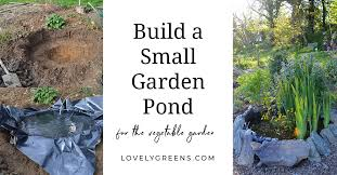 to build a small pond for the garden