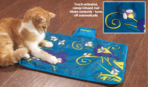 get some new toys that will challenge your cat during the day or anytime you are away only put them out when you are gone this firefly mat is an example
