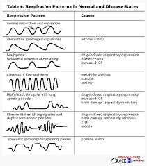 Types Of Breathing Patterns 96 Best Nursing Respiratory Images On Pinterest Nursing