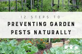 preventing garden pests naturally