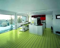 floor paint ideasApple green floor paint ideas for kitchen  Flooring Ideas  Floor