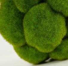 Decorative Moss Balls Bumpy Moss Balls 100in Long shelf Decoration and Furniture market 39