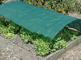 garden shade cloth. 2827. Shade Cloth Garden P